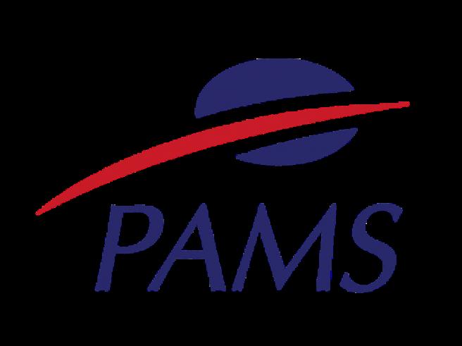 PAMS Inc